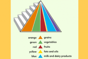 teaching kids about food pyramid