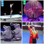 Ringling Bros. and Barnum & Bailey Circus Review