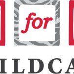 Local Business Spotlight: 2 for U Childcare