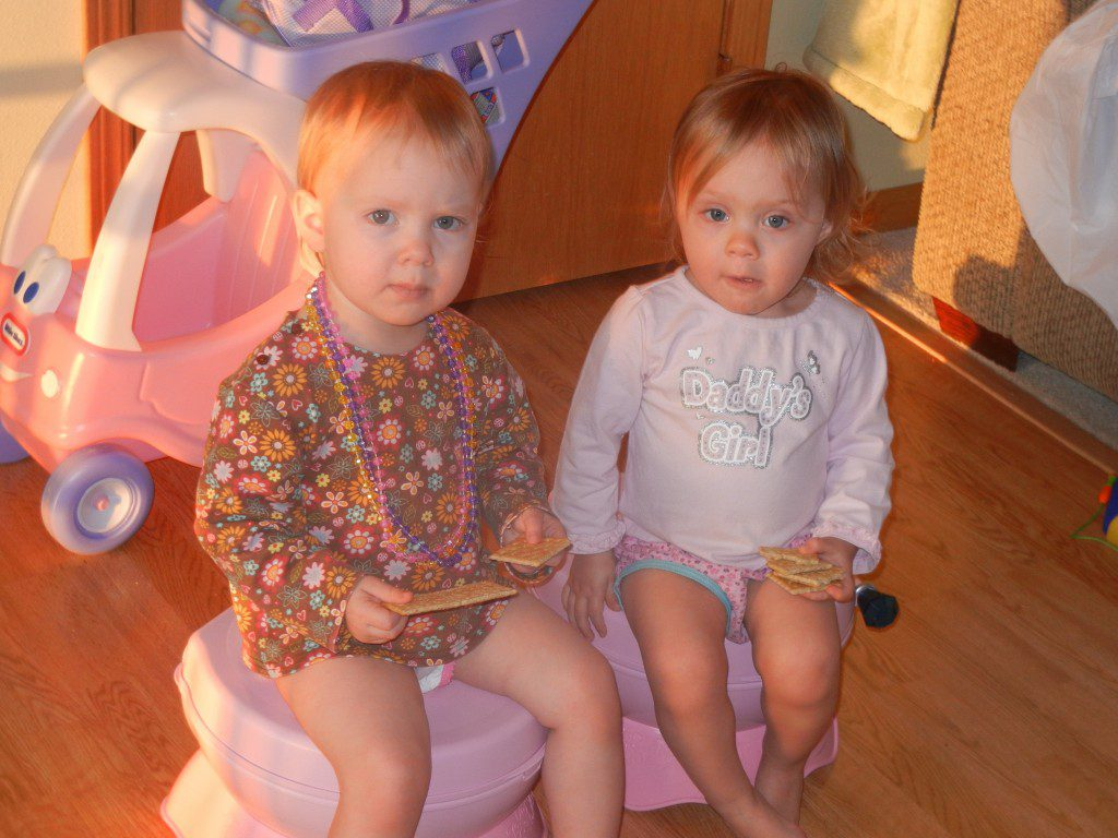Twins - Potty Chairs
