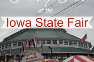 Iowa State Fair, Family Fun, Field Trip, Things to Do