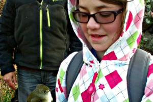 Holding a bird at the South Dakota Birding Festival