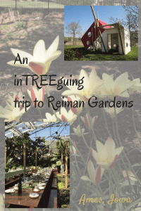 Reiman Gardens in Ames, Iowa is a family friendly adventure! Interactive treehouses are featured in 2015.