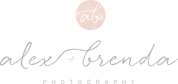 Local Business Highlight: Alex and Brenda Photography | Des Moines Moms Blog