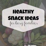 What Our Family Eats for Healthy Snacks