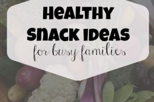 healthy snack ideas for busy families