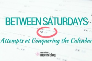 Between Saturdays: Attempts at Conquering the Calendar