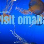 5 Reasons to Visit Omaha