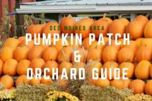 Des Moines Area Pumpkin Patch and Orchard Guide | Des Moines Moms Blog