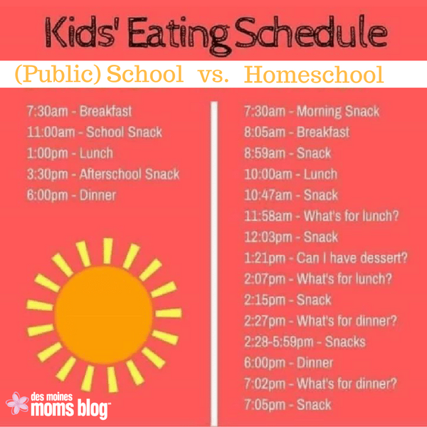 Pros And Cons Of Homeschooling Des Moines Moms Blog