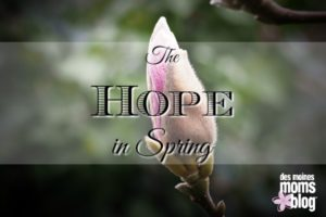 The Hope in Spring