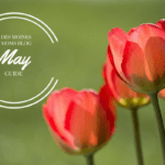A Des Moines Mom's Guide to May 2017