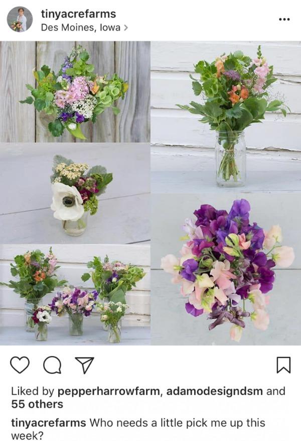 tiny acre farms instagram