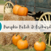 Des Moines pumpkin patch orchard guide fall