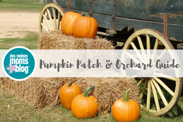 Des Moines pumpkin patch orchard guide