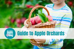 apple orchards des moines