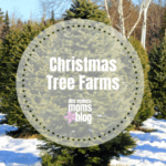 Christmas Tree Farms Near Des Moines