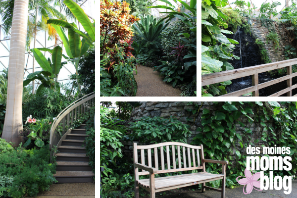 Botanical Center: indoor photos in Des Moines