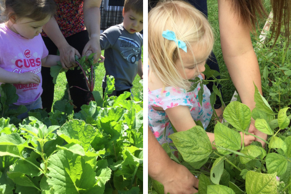 gardening at The Goddard School Waukee