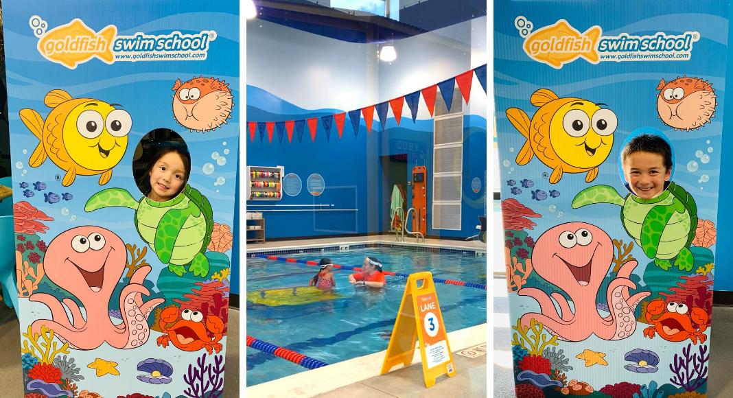 goldfish swim school