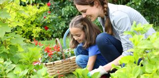 Gardening Benefits