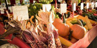 fall farmers market